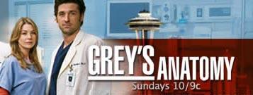 The Top 10 - Greys Anatomy Logo 1