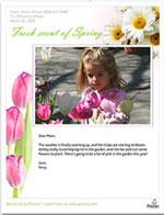 presto-springblooms2.jpg