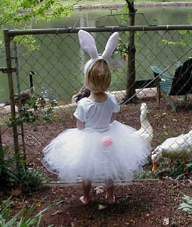 review-tutufantasy-bunny-po.jpg