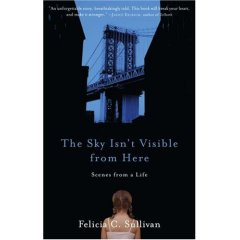 5 Minutes for Books — The Sky Isn't Visible From Here