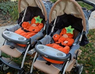chicco-pumpkins.jpg