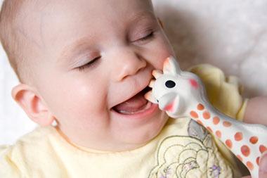 review-sophie-giraffe-olivi.jpg