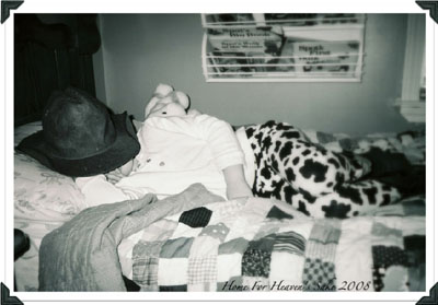 Sleeping Angel 20 Beverly