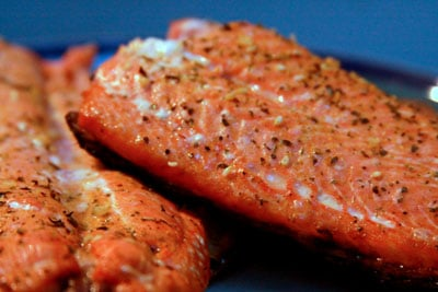 tackle-it-tuesday-salmon