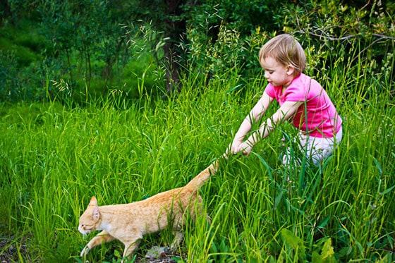 wordless-wednesday-toddler-cat