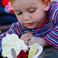 Wordless Wednesday — Strawberry Shortcake (the kind you eat!)