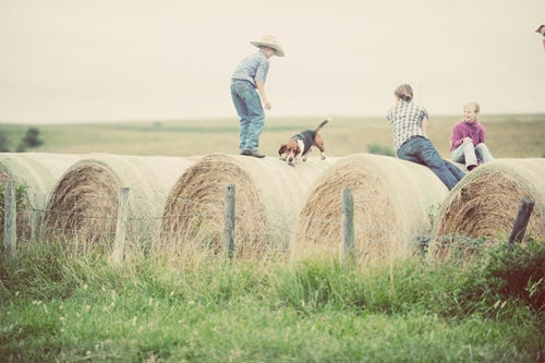 photo-by-Ree-Drummond-The-Pioneer-Woman