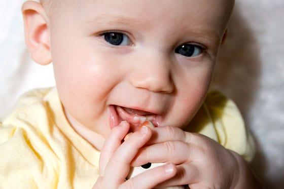 Olivia - Little Teeth, Little Fingers