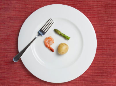 Absurdly Small Diet Meal