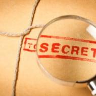 Susan's Secret Project Revealed…