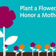 Plant a Flower, Honor a Mother