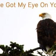 Pin It Friday – I've Got My Eye On You