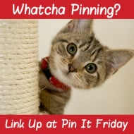 Pin It Friday – Add Your Favorite Pins