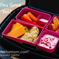 Have You Gone Bento Yet? Laptop Lunches Solves Your Lunch Box Boredom