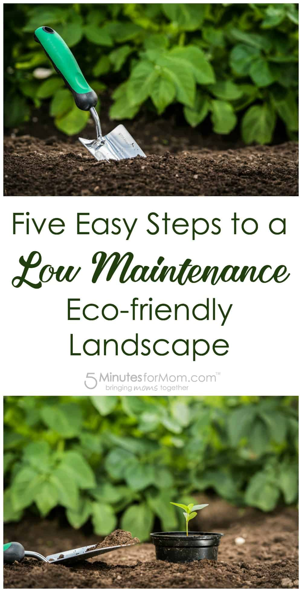 Five Easy Steps to a Low Maintenance Eco-friendly Landscape - Gardening Tips