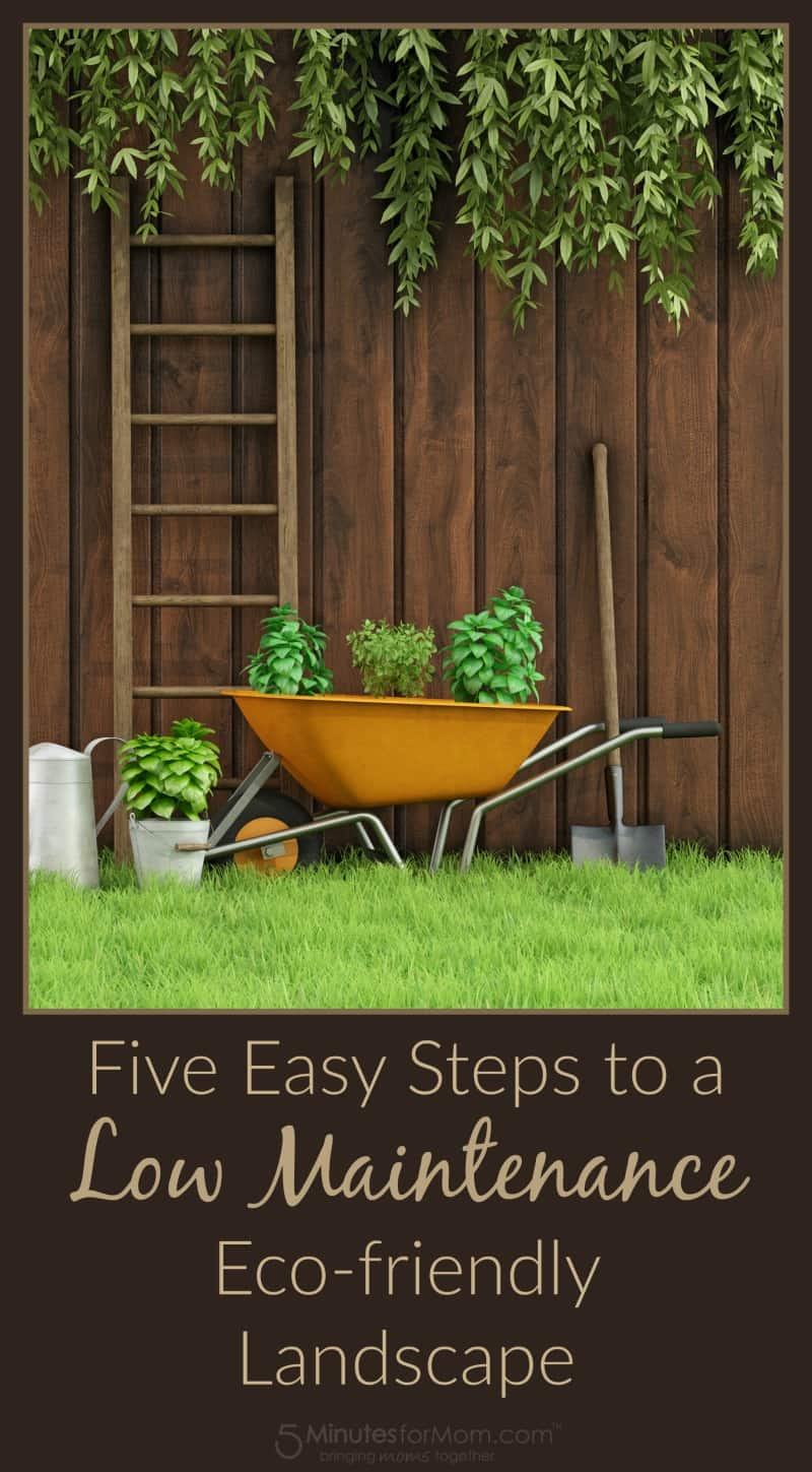Gardening Tips - Five Easy Steps to a Low Maintenance Eco-friendly Landscape