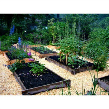 Tackling a Spring Garden
