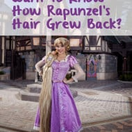 Rapunzel at Fantasy Faire – How She Grew Her Hair Back – #Disneyland