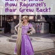 Rapunzel at Fantasy Faire – How She Grew Her Hair Back – #Disneyland