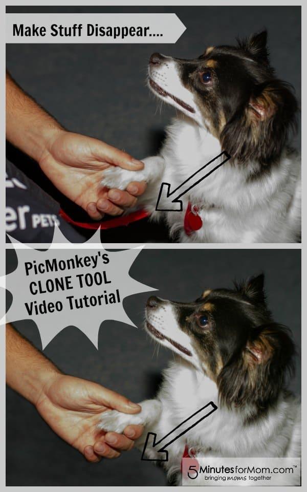 PicMonkey Tutorial - Clone Tool