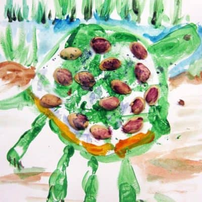 paint a turtle