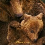 Disneynature's Bears New Posters and Trailer #disneynaturebears