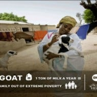 ONE Goat for Hope – #GiveAGoat