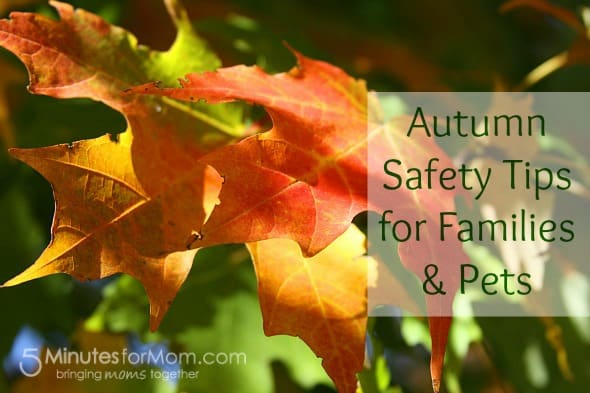 autumn safety tips for families and pets