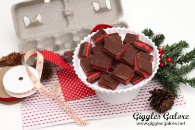5Peppermint-Fudge-Christmas-Gift
