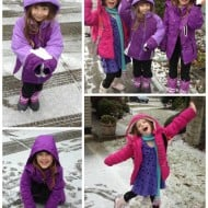 Wordless Wednesday – A Sprinkling of Snow