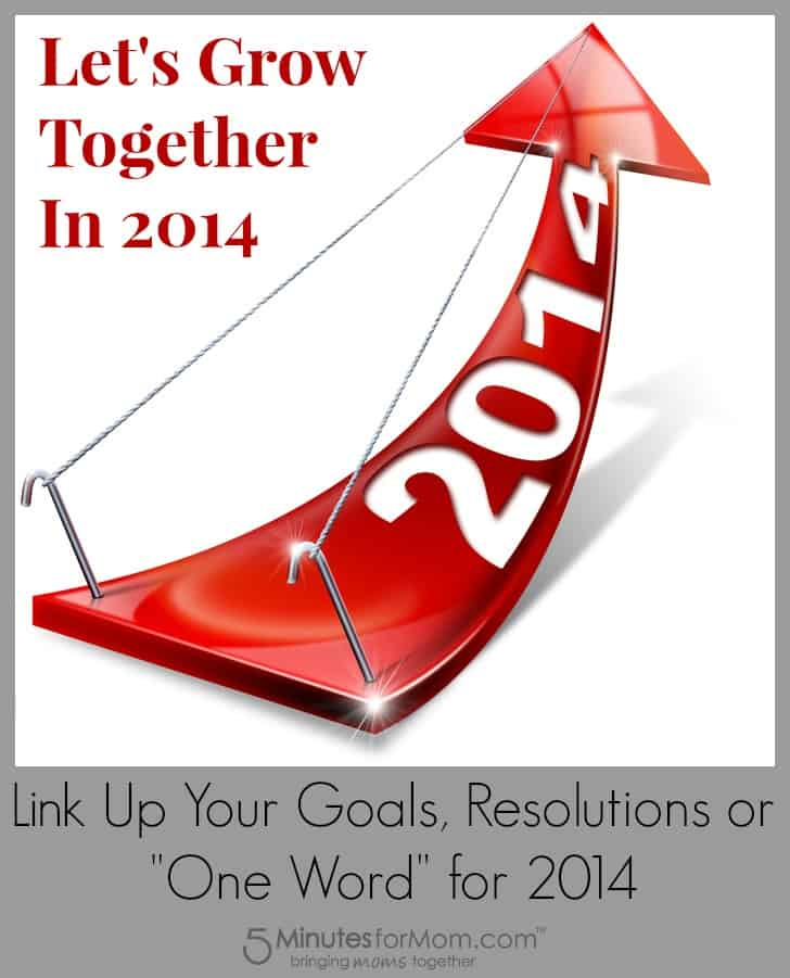 New Years Goals 2014