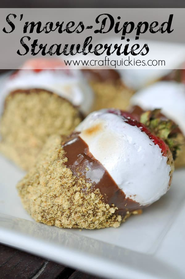 *Smores-Dipped-Strawberries-from-Craft-Quickies