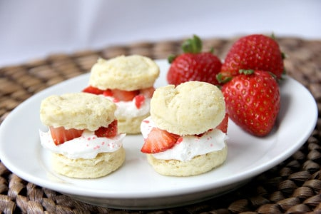 *strawberry-shortcake-14a