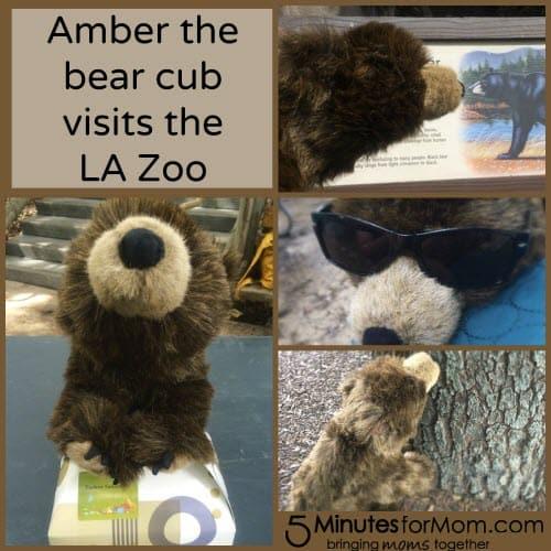 Amber Tour Collage