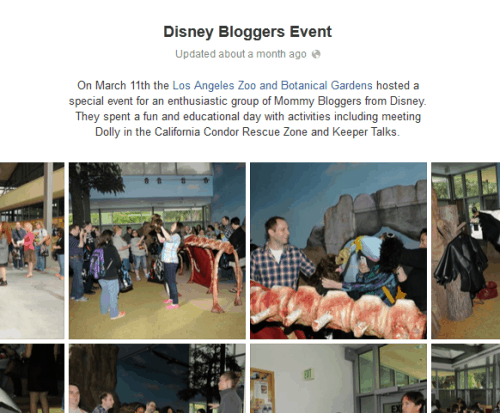 Disney Blogger Event at the LA Zoo