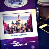 Disney Social Media Moms 2014 — Link Up — #DisneySMMoms