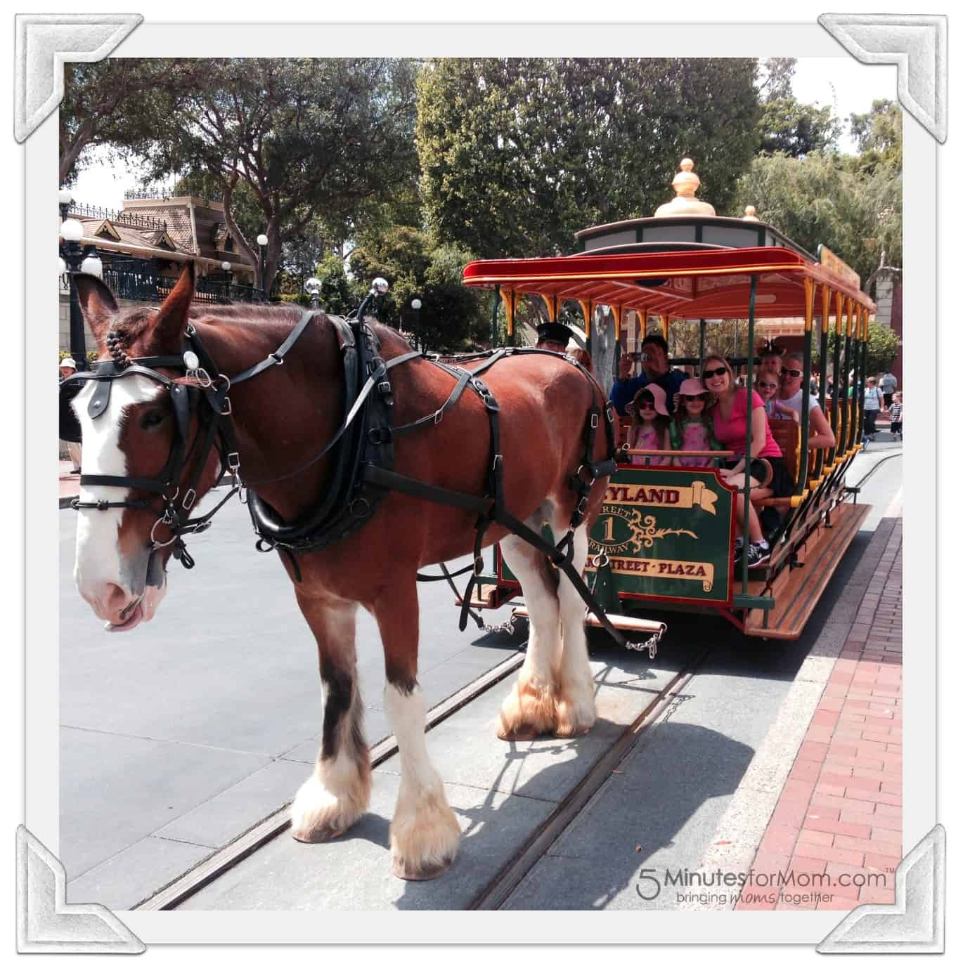Disneyland Horse and Carriage Ride
