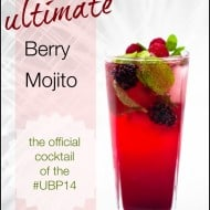 The Ultimate Berry Mojito