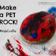Make Your Own Pet Rocks #KidsCrafts