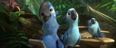 rio-2 birds with technology