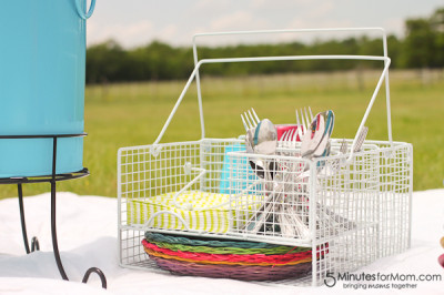 BrylaneHome Picnic Review picnic caddy