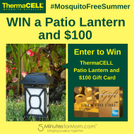 Win a ThermaCELL Patio Lantern & $100 Gift Card #MosquitoFreeSummer #Giveaway