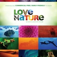 "Meet ""Love Nature"" and Get Ready For A Wild Trip"