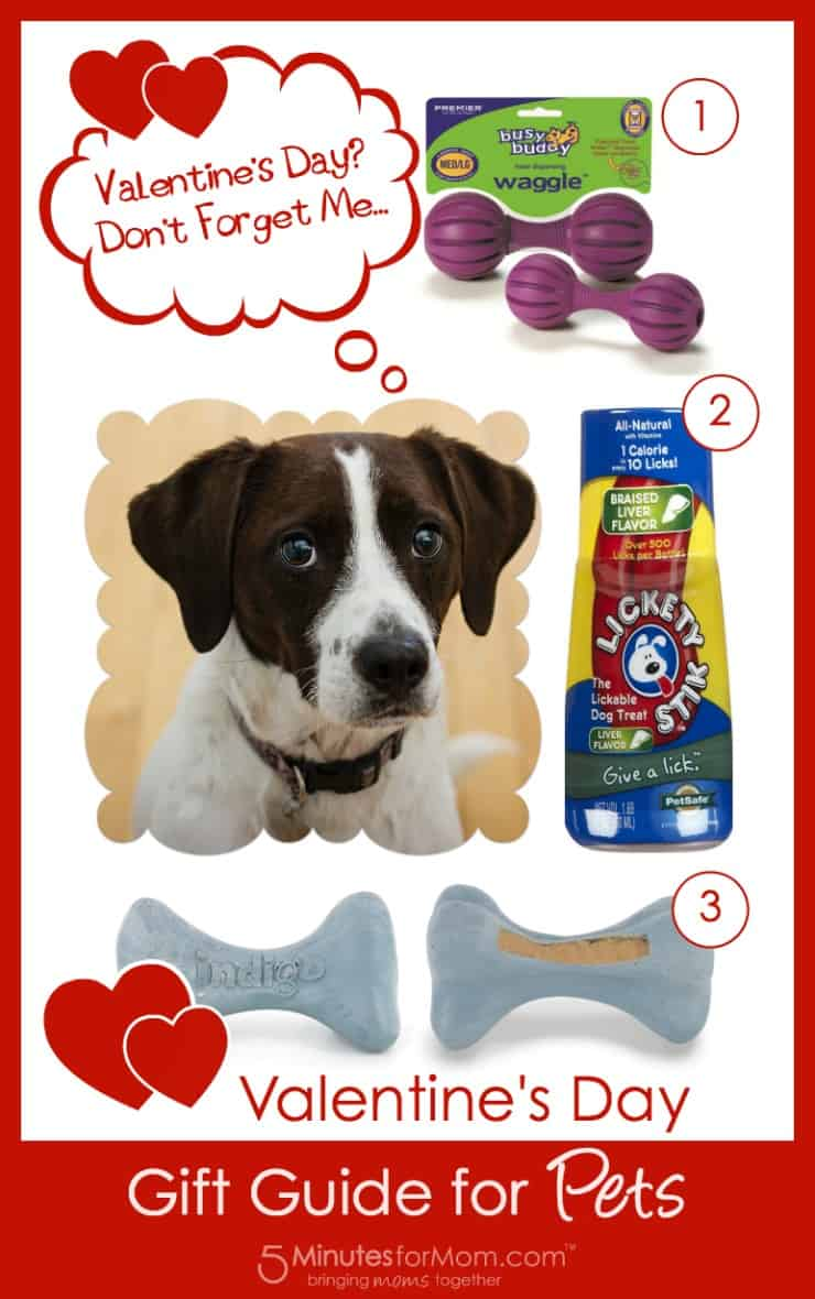 Valentines Day Gift Guide for Pets