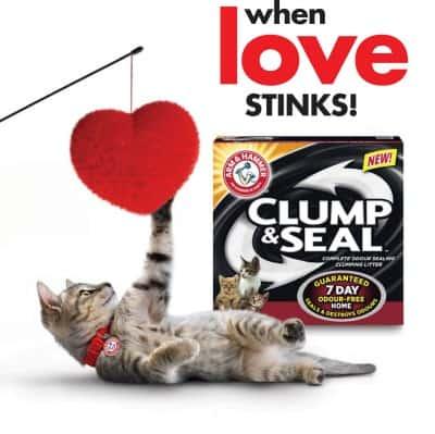 When Love Stinks