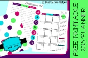 Free Printable Clothing Tracker / Busy Mom's Helper for 5MinutesforMom.com