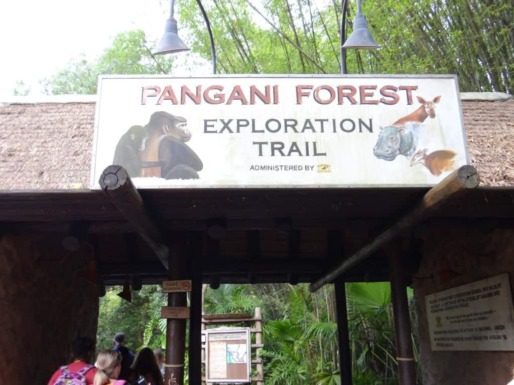 Backstage Tales - Pangani Forest