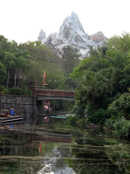 Disney's Animal Kingdom Everest