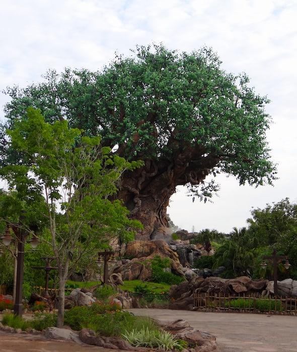 Disney's Animal Kingom Tree of Life