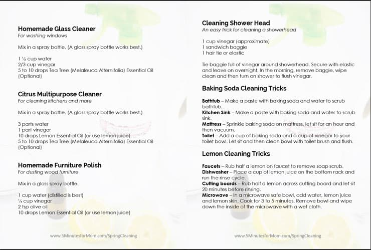 Natural Cleaner Recipes Free Printable